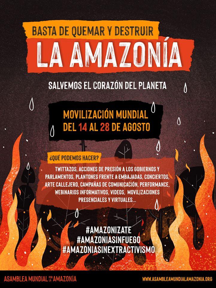 Amazonia in fiamme