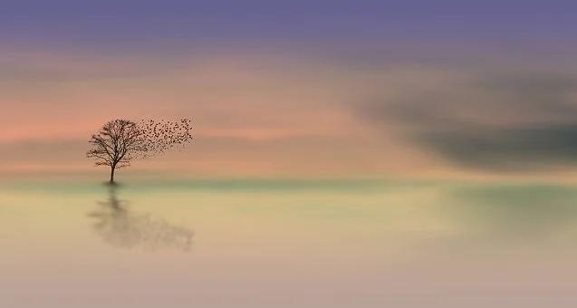 Albero spoglio su specchio d'acqua, uccellini in volo, senso di pace e tranquillità