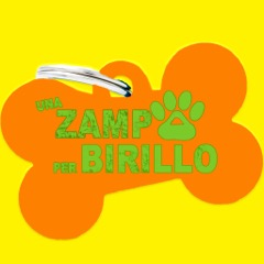 Zampa per Birillo