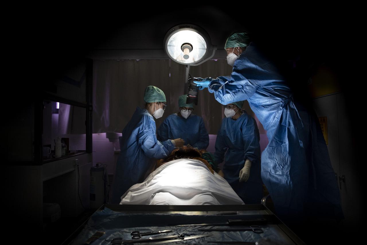 immagine raffigurante team medico in una sala settoria